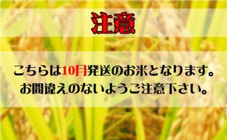 A-1422010 (新型コロナウイルス対策支援)【2020年10月発送分】山形県河北町産はえぬき10kg(5kg×2袋)【JAさがえ西村山】