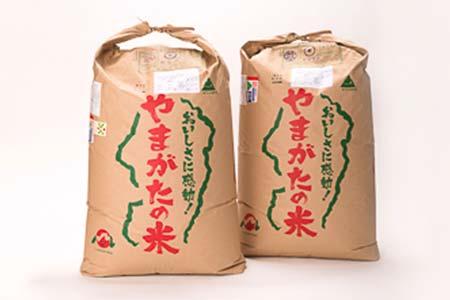 6-(5)【平成29年産米】「大石田産特別栽培米」つや姫30㎏&はえぬき30㎏セット(玄米)