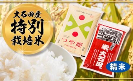 令和元年大石田町産 特別栽培米 つや姫 5㎏ はえぬき 5㎏ 食べくらべセット 精米 10kg