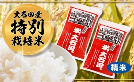 令和元年大石田町産 特別栽培米 はえぬき 精米 10kg×3回 30kg 定期便