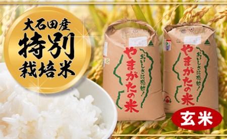令和元年大石田町産 特別栽培米 つや姫 30㎏ はえぬき 30㎏ セット 玄米 60kg