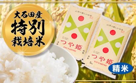 令和元年大石田町産 特別栽培米 定期便 つや姫 精米 10kg×3回 30kg