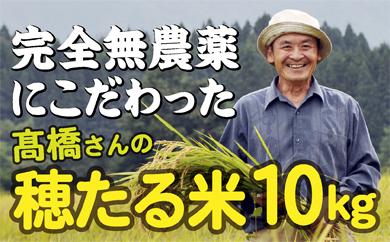 F031-001 特別栽培米 穂たる米コシヒカリ 10㎏