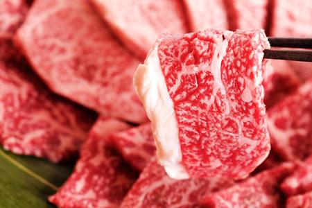 ふるさと納税 山形牛焼肉セット