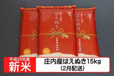 【A135】平成29年庄内町産はえぬき15kg(2月発送)