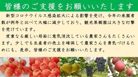 【先行予約】No.0462 福島のもも かぐや2kg