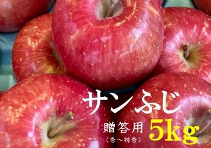 No.1010 【2021年度産先行受付】りんご サンふじ 5kg 大玉 【贈答用】 林檎 リンゴ(秀~特秀)