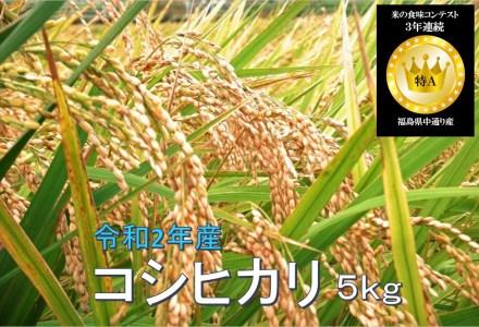 No.1014 令和2年産 コシヒカリ 5kg 精米