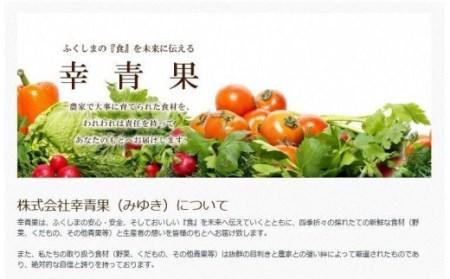 No.1025 【先行予約】ふくしまの桃 3kg 品種お任せ【贈答用】もも モモ