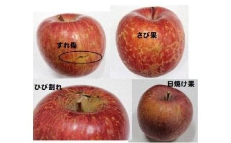 No.1207 福島のりんご「サンふじ」 家庭用 10kg