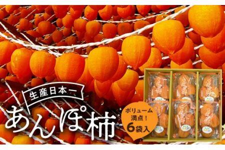 伊達市発祥の特産品 あんぽ柿(蜂屋柿)6袋入り F20C-132