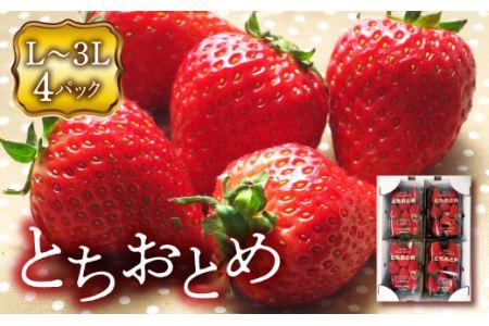 《先行予約》福島県 伊達市産 いちご  (とちおとめ3L~Lサイズ)4パック F20C-133