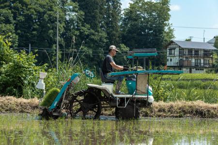 令和2年産新米 減農薬・減化学肥料栽培 もち米 こがねもち 5kg 精米