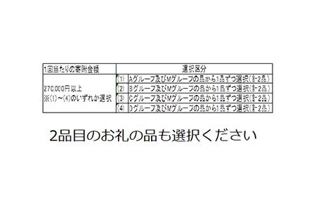 M-1 電子レンジ(メタリックレッド)