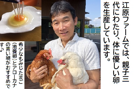 AG02_江原ファーム アローカナの青い卵(50個)