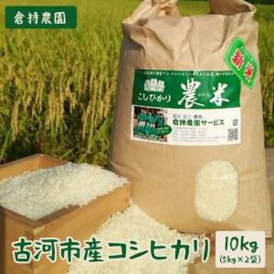 AN01_【令和元年新米】古河市産コシヒカリ10kg【倉持農園】