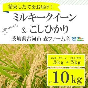 BI01_食べ比べ!低農薬米こしひかりとミルキークイーン計10kg【お中元・お歳暮にも!】