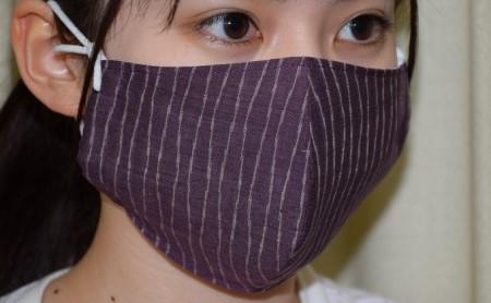 天然の抗菌作用 結城つむぎ(シルク)の手作りマスク【2枚セット】 大サイズ