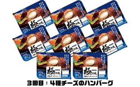 日本ハム 極み焼きハンバーグ 3ヶ月連続お届け