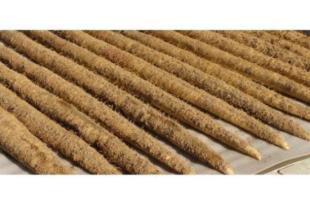 CH-6 笠間自然薯研究会の自然薯 約1㎏