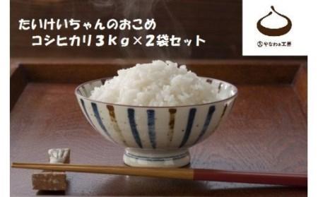 CJ-11 令和3年度米 たいけいちゃんのおこめ 3㎏×2袋
