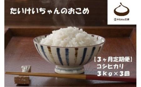 CJ-13 【3ヶ月定期便】令和3年度米 たいけいちゃんのおこめ 3㎏×3回