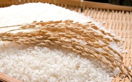 令和元年産茨城県産コシヒカリ2kg&特選ふくまる2kg食べ比べセット【白米発送】