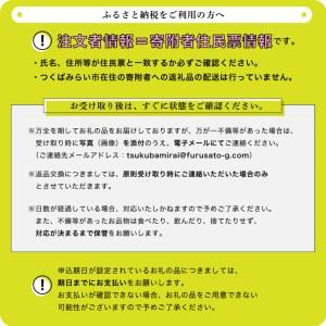 ベビーカー【ピジョン】ビングルBB1 (モノクロノルディック)