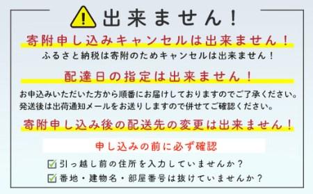 【大玉】刺身用ほたて貝柱<丸太水産>