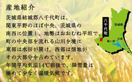 C-3【令和3年産】八千代町産コシヒカリ・あきたこまち食べ比べセット13㎏
