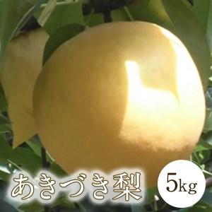 D-5-20 肥沃な土地が育てた八千代町産「あきづき梨」5㎏ 9月上旬からお届け