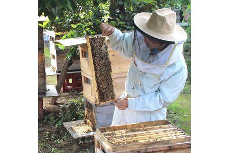 【2605-0024】【生ハチミツ3種】月ごとに楽しむ田舎はちみつ無添加非加熱ギフトセット