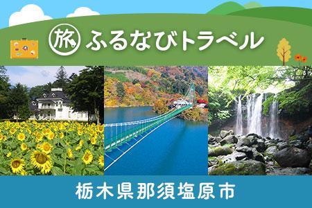 【有効期限なし!旅行で使える】栃木県那須塩原市トラベルポイント