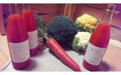 B-16無農薬で育った良農園野菜セット/野菜と野菜ジュースセット