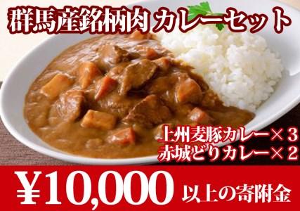 群馬産銘柄肉カレーセット