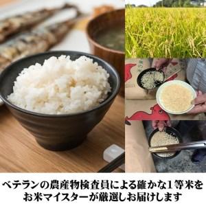 千葉県産コシヒカリ8kg 【お米マイスター厳選】【特A評価】