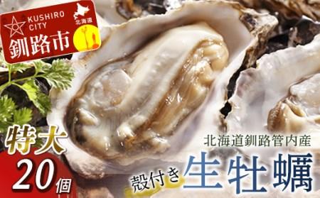 [Ho202-B084]生牡蠣20個入(釧路管内産特大サイズ120g~150g)