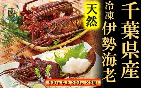 【天然】甘み凝縮!活〆特大伊勢海老(冷凍)