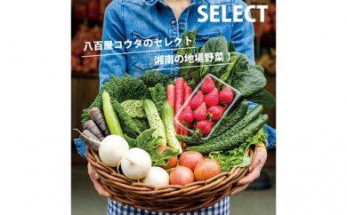 [№5940-0055]【平塚よりお届け】湘南産 地場野菜・フルーツ 詰合せ