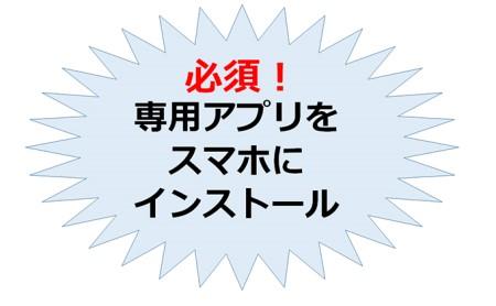 ひらつか☆スターライトマーレ(行政ポイント3000pt付与)