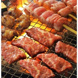 豊西牛焼肉ギフトB【1205207】