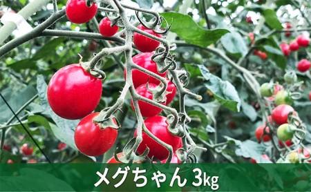 メグちゃん工房・幻のミニトマト【メグちゃん】約3kg
