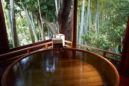 600-03jin 元湯陣屋 貴賓室と豪華・夢浮橋会席料理を堪能一泊二食 2名様プラン