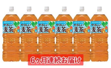 【6ヶ月連続お届け】GREEN DA・KA・RA やさしい麦茶2L×6本