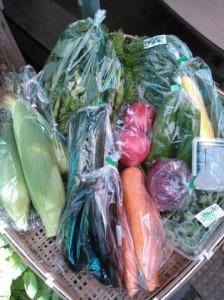 旬の採りたて野菜・果樹セット