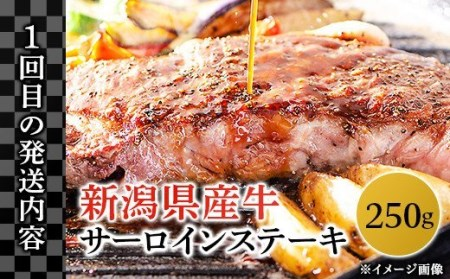 76-39【3ヶ月連続お届け】長岡産黒毛牛の定期便