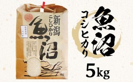 B7-15新潟県魚沼産(長岡川口地域)コシヒカリ5kg