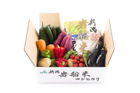B4026 岩船米コシヒカリと季節の野菜セット②