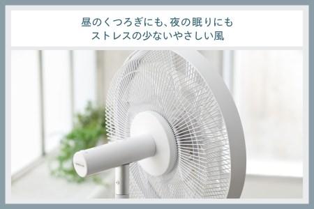 コアンダエア (EF-E981W)