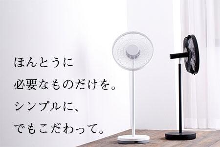 コアンダエア (EF-E981B)